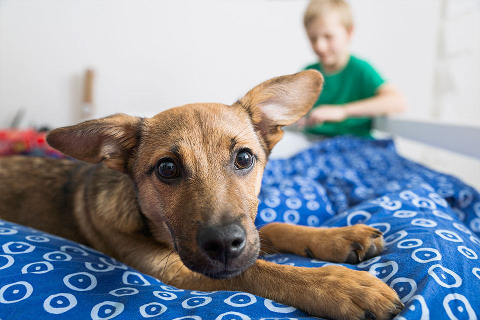philipp_dimitri_photography-kidddoggydog-people-kids-lifestyle-07